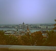 Rain over Pest viewed from Buda, Hungary 2001 by Priscilla Turner