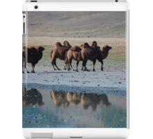 Camel Reflections Mongolia iPad Case/Skin
