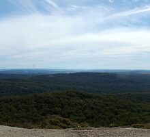 Bald Rock Panoramic by DePaul