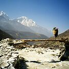 Sherpa on Everest Trail Nepal by Caren della Cioppa