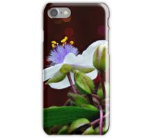 Tradescantia (Andersoniana Group) #1 Landscape iPhone Case/Skin