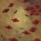 Brown Poppie Painting by Nathalie Van