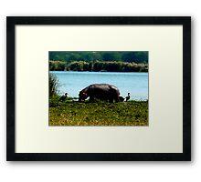 Hippo charm Framed Print