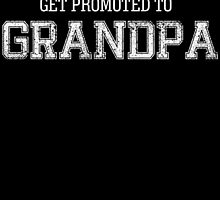 only the best dads get promoted to grandpa by teeshoppy