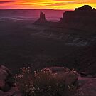 Canyonlands Sunset by Nick Johnson