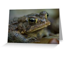 Toad in the Rain Greeting Card