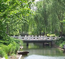 Forbidden City Park 2, Beijing by Carrie Norberg