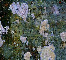Grave Lichen 5 by Kenart
