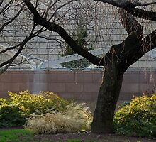 Enid A. Haupt Garden #1 by Eileen McVey