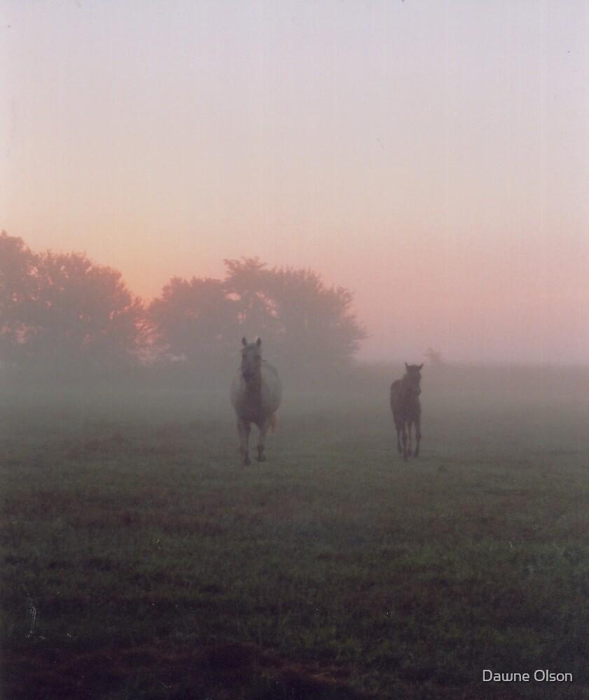 Morning Run by Dawne Olson