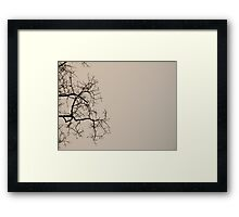 Beijing winter Framed Print