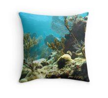 Molasses Reef Throw Pillow