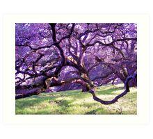 Squiggly Oak Art Print