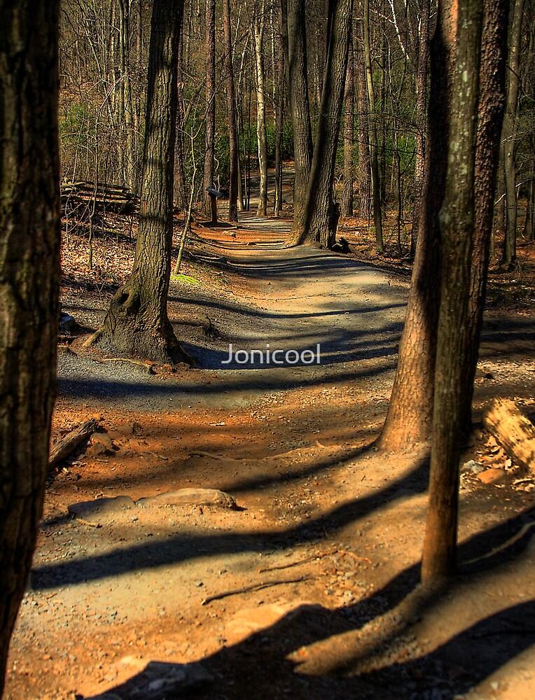 Mountain Path by Jonicool