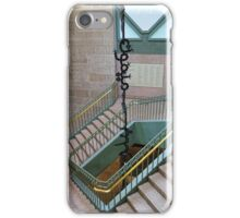 Climbing Monkeys iPhone Case/Skin