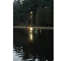 Secret in the Woods ll Photographic Print