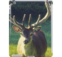 Stag Deer iPad Case/Skin