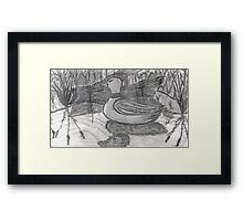THE LOST DECOY Framed Print