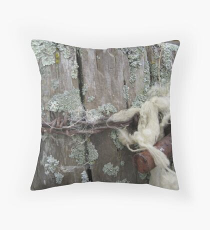 The Post Throw Pillow