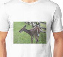 Blue Ridge Doe Unisex T-Shirt