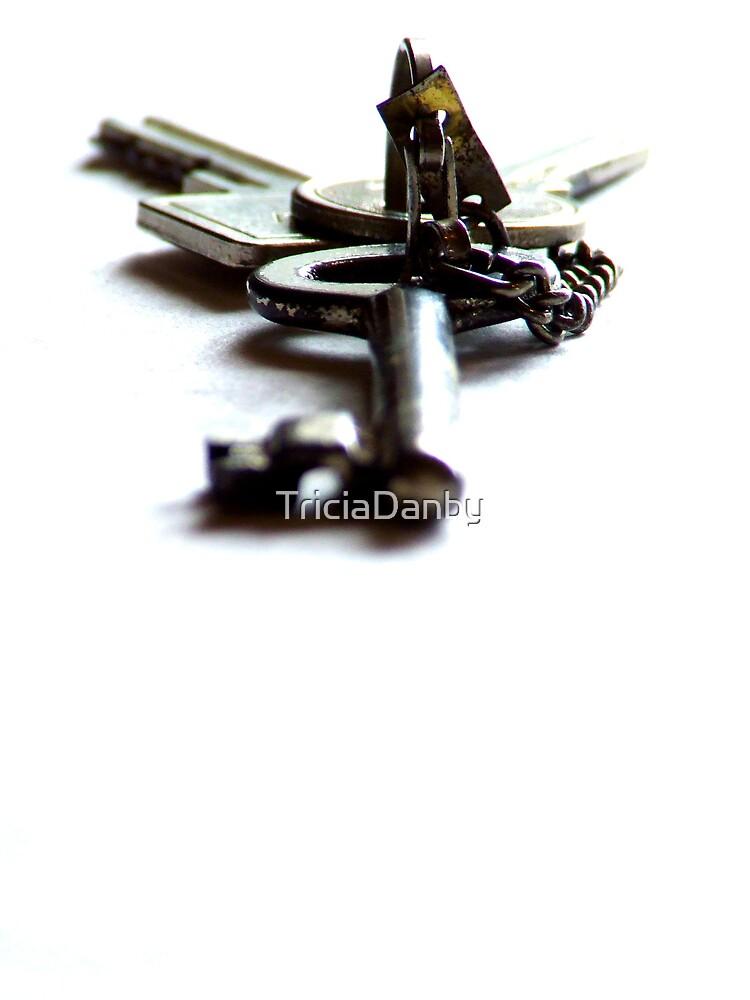 The Key by TriciaDanby