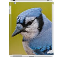 Blue Jay Portrait iPad Case/Skin