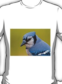 Blue Jay Portrait T-Shirt