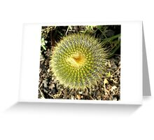 Pin Cushion Greeting Card