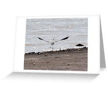 Heron wingspan Greeting Card