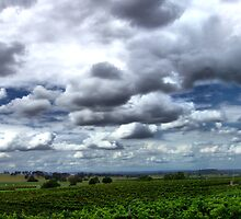 Hunter Valley Storm by Mark Cronin