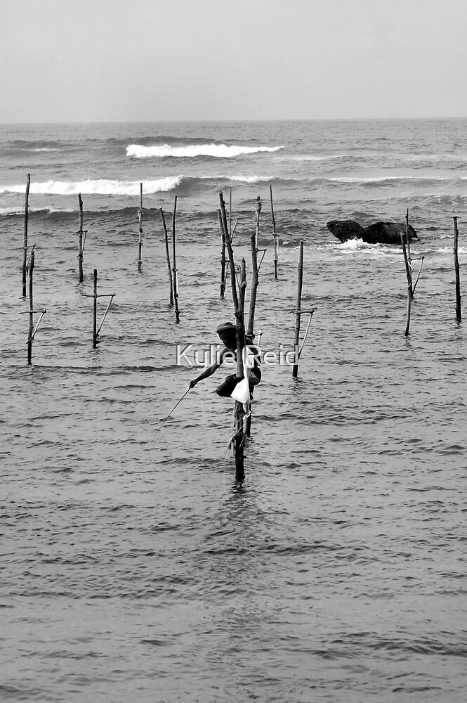 Gone Fishing by Kylie Reid