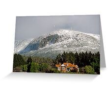 Mt Wellington snow beauty Greeting Card