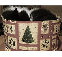 MERRY CHRISTMAS FROM THE CAT IN THE HAT (BOX) Photographic Print