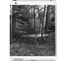 23.12.2014: Old, Abandoned Car in Forest iPad Case/Skin