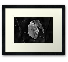 Back to the Wind Framed Print