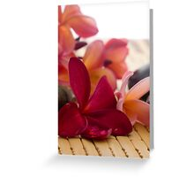 Frangipani and dews Greeting Card