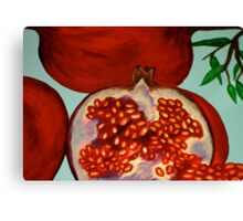 picked off the pomegranate tree Canvas Print