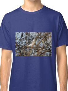 Pretty Blue Boy Classic T-Shirt
