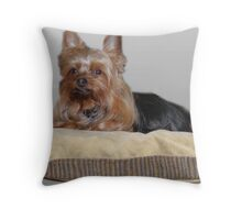 His Highness' Throne Throw Pillow