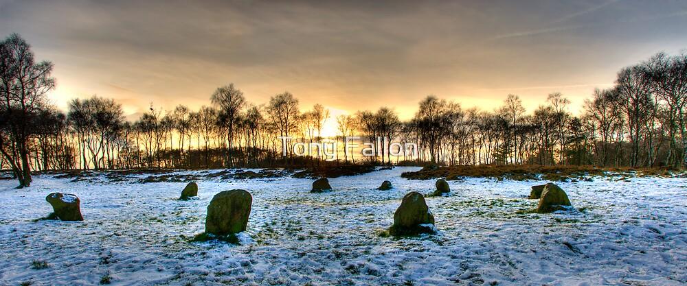 The Nine Ladies of Stanton Moor by Tony Fallon