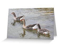 Follow the leader Greeting Card
