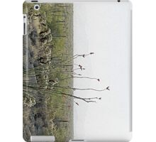 Organ Pipe Cactus National Monument iPad Case/Skin