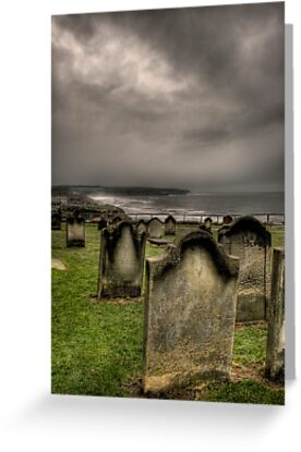 Resting Place With A View by Dave Warren