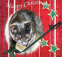 Happy Christmas wishes by Kelly  McAleer