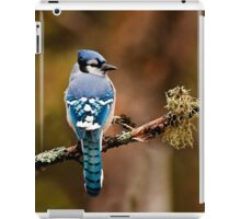 Blue Jay On Branch iPad Case/Skin