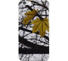 Last Days of Fall. iPhone Case/Skin