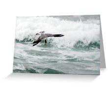 Dropping in for Breakfast Greeting Card