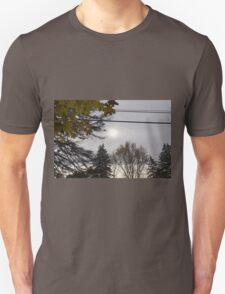 Cold but Beautiful T-Shirt