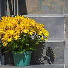 Pot of Gold on Steps by Gerda Grice