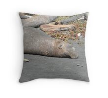 Napping at Low-Tide Throw Pillow